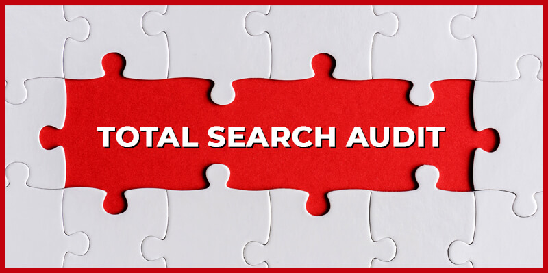 Organic and PPC Total Search Audit - MasterPositioning.com